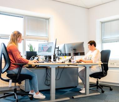 Consulent planningsbureau (21-029)
